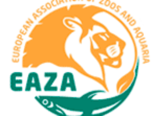EAZA Animal Welfare Forum