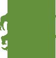 Svenska Djurparksföreningsens yttrande över remiss om genetisk förstärkning av vargstammen i Sverige